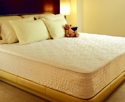 Beautyrest® Mattress Pads